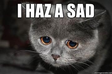 i haz a sad cat